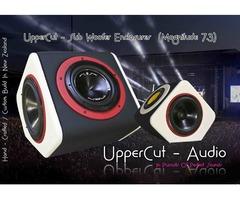 UpperCut Audio - Private Loudspeaker Enclosure Re-Development & Enhancement.