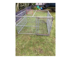 sheep crate[small]