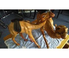 Retro/Antique Camels