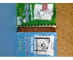 Dairy of the wimpy kid books  x2