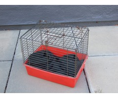 Cat Carry Cage