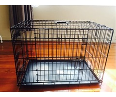 Top Quality Precision Pet Great Crate Two Door Black (3000)